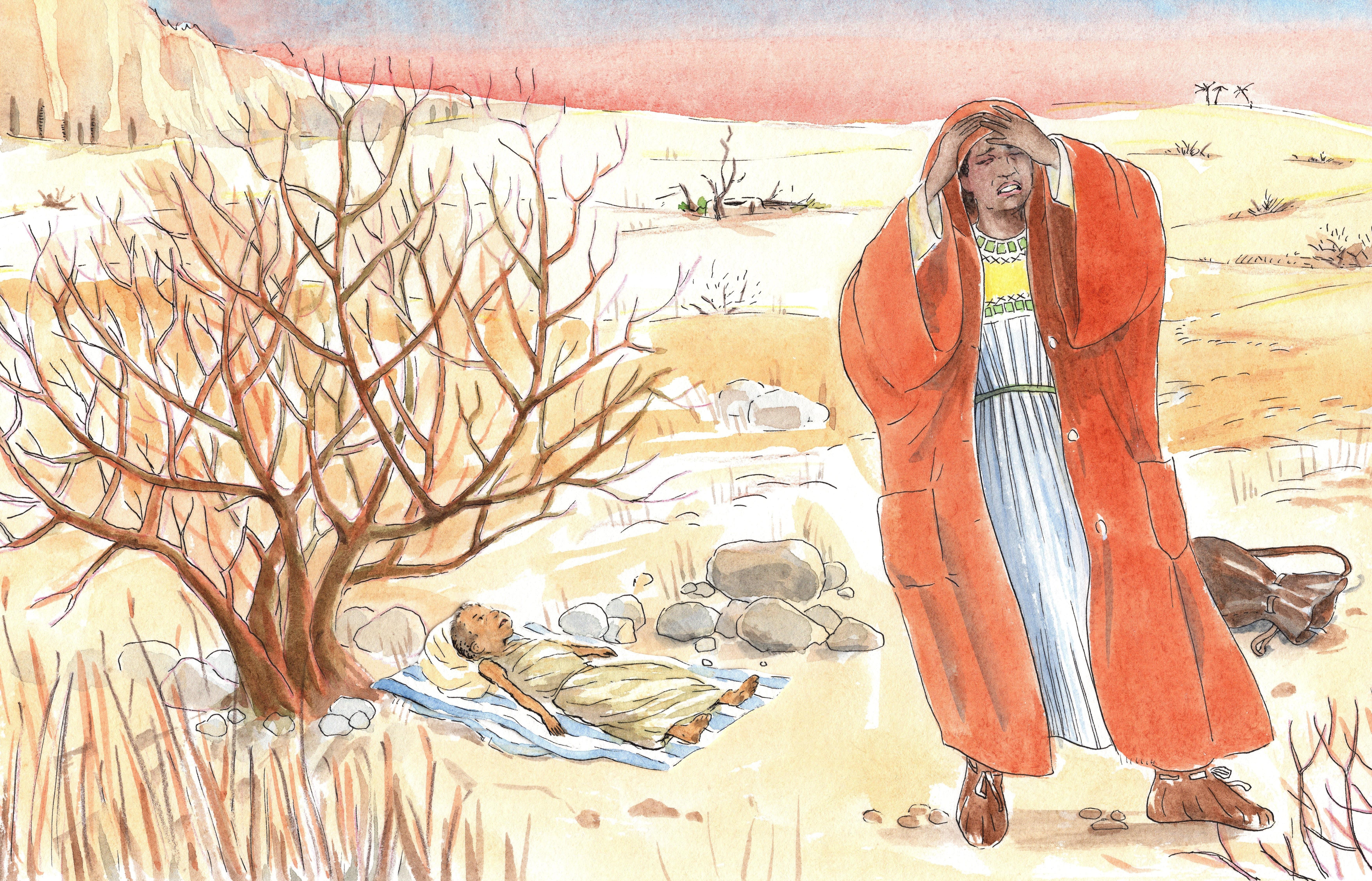 B.1.03 De zonen van Abraham